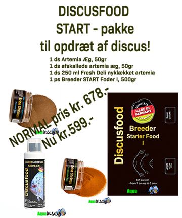 DISCUSFOOD STARTPAKKE 1