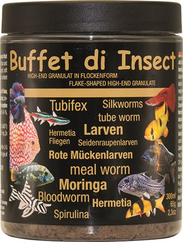 Buffet at Insects